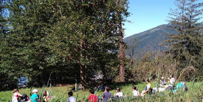 I centri estivi 2020 al Parco Monte Barro