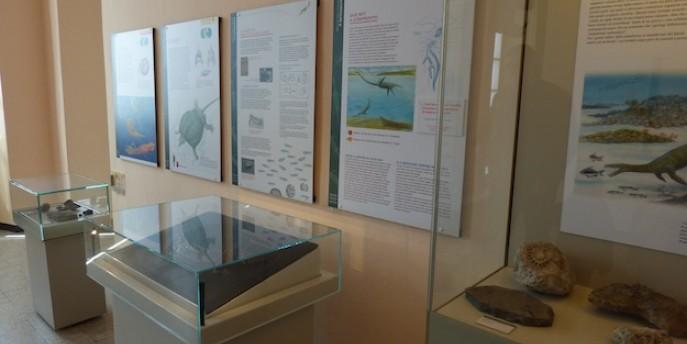 Le proposte didattiche del Sistema Museale Urbano Lecchese