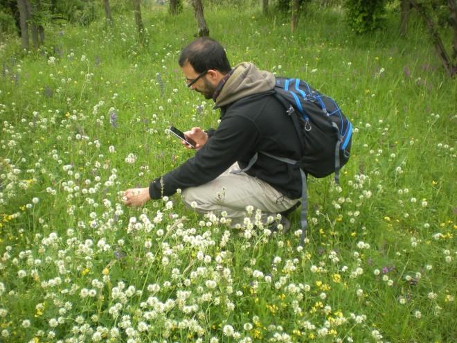 Alla scoperta della natura con BioBlitz Lombardia 2020