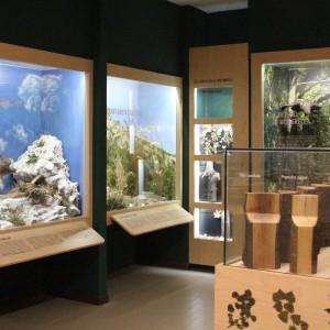 Il Centro Visitatori del Parco Monte Barro