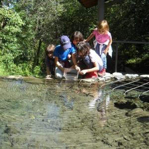 Attività didattica sull'acqua